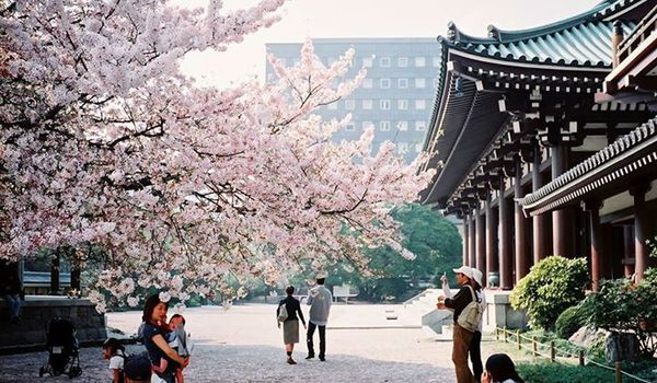An overwhelming majority of people just love it here! 96% of people surveyed think it's a pleasant place to live. It was even rated the top most livable city in Japan.