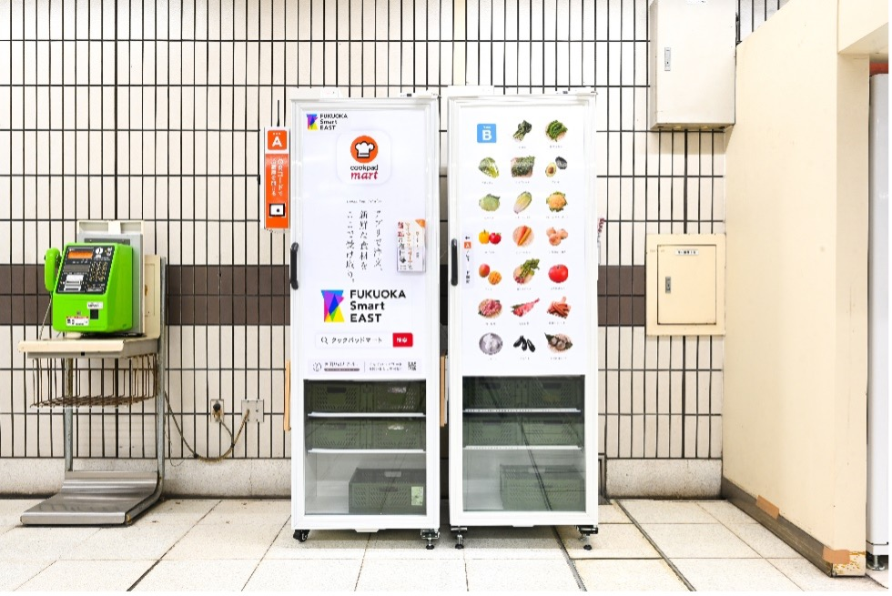 """Refrigerator-type """"Fresh Food Delivery Box"""""""